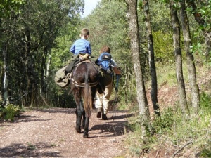 Donkey trekking - tired child