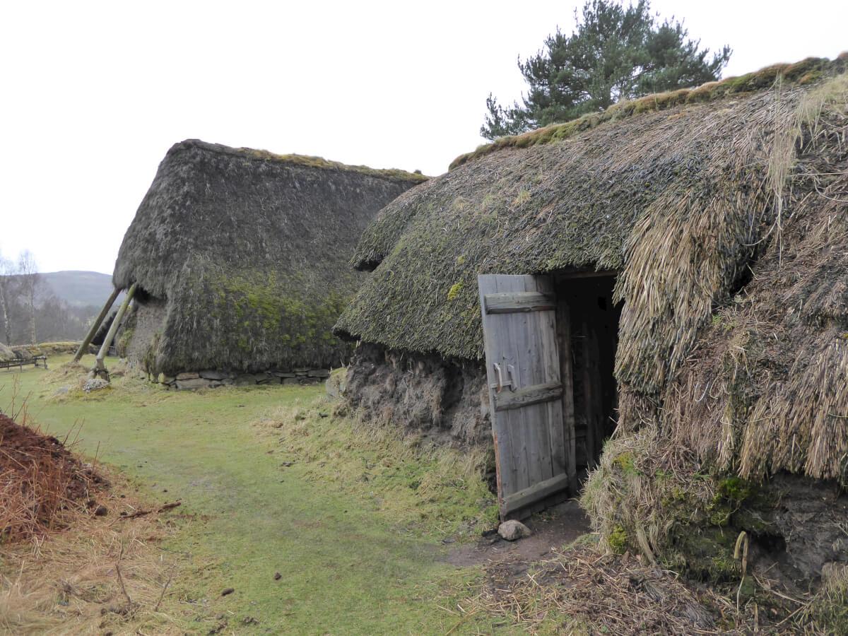 Highlander habitat