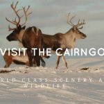 why visit the Cairngorms?