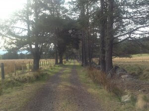 self-guided walking in the Highlands