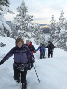 guided winter walking
