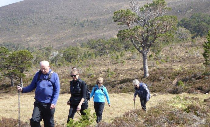 where to walk in scotland